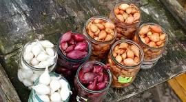 Лук севок: преимущества, сфера применения и правила выращивания
